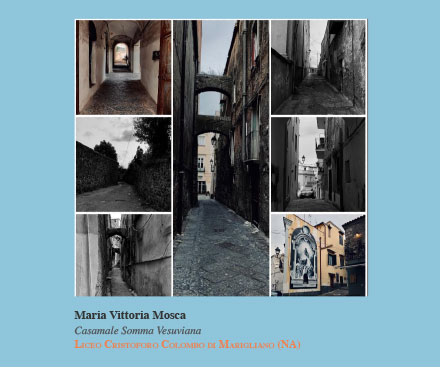 Mosca-Maria-Vittoria-Casamale-Somma-vesuviana-(collage-)